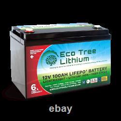 Eco Tree 12v 100AH LiFePO4 Deep Cycle Lithium Battery Heavy Duty BMS Off Grid