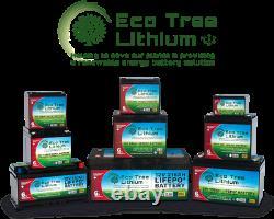 Eco Tree 12v 54AH LiFePO4 Deep Cycle Lithium Battery Heavy Duty BMS Off Grid