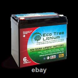 Eco Tree 12v 54ah Lifepo4 Deep Cycle Batterie De Lithium Lourd Bms Hors Réseau